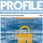 titel_ew-profile-it-sicherheit_bb